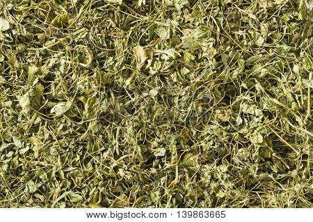 Kasuri Methi or dried fenugreek leaves (Trigonella Foenum Graecum)