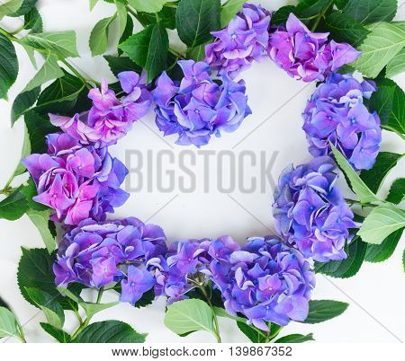 blue and violet hortensia flowers heart frame pattern on white background