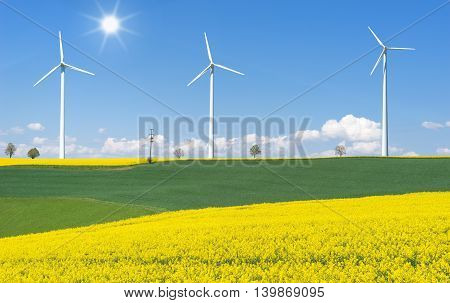 Blooming rapeseed fields with three wind turbines in hilly rural landscape in sunlight