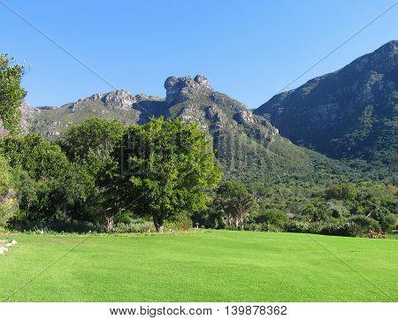 Kirstenbosch, Cape Town South Africa