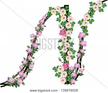 illustration with letter N from rose and brier flowers isolated on white background