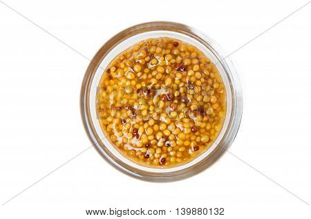 Grain mustard in transparent glass bowl, isolated