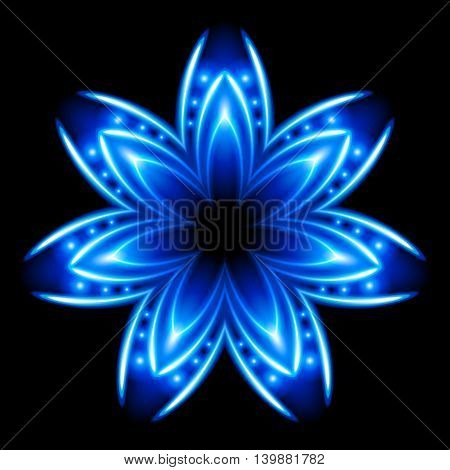 Blue and white flower. Shining. Black background.