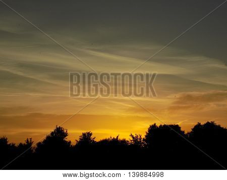Orange sky during sunset and deciduous forest