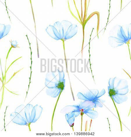 A seamless floral pattern with watercolor hand-drawn tender blue cosmos flowers, painted on a white background