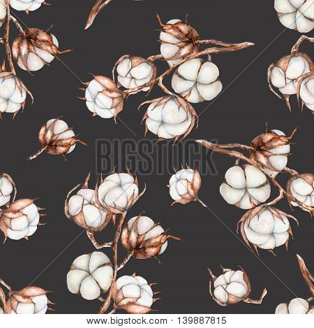 Seamless pattern of watercolor cotton flowers branches, hand drawn isolated on a dark background