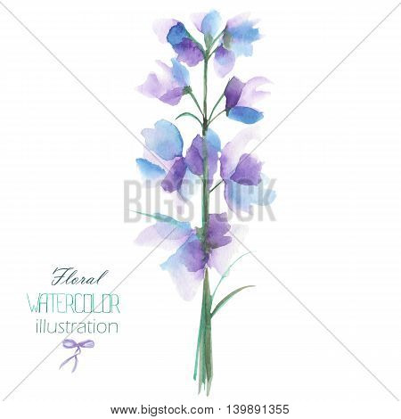 Illustration with the isolated watercolor blue, purple and violet Delphinium (Larkspur) flower, hand drawn on a white background,  for self-compilation of the bouquets and ornaments