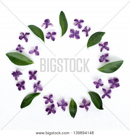 pattern with small blue lilac spring flowers and green leaves top view / frame of the natural elements