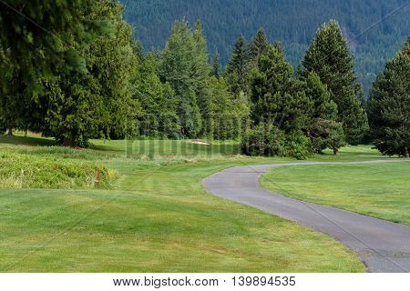 Wooded golf course with cart path meandering through