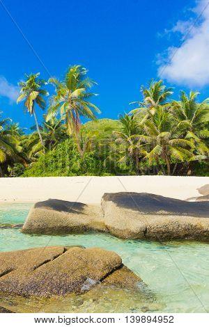 Peaceful Wallpaper Sunshine Coast
