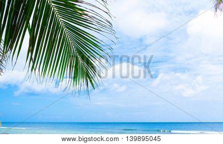 Idyllic Coast Island Lagoon