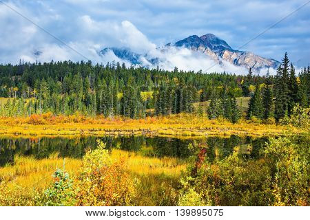 Lake amongst the evergreen forests, yellowed shrubs and mountains. Warm autumn day in Jasper Park, Canadian Rockies