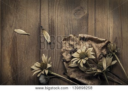 Dried Flowers on a wooden background Autumn Still Life
