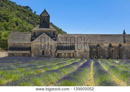 Abbaye De Senanque And Lavender, France