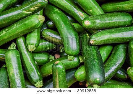 Fresh Cropped Green Zucchini