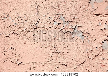 Salmon color abstract cracked paint wall textured background