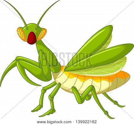 cute green Praying mantis grasshopper cartoon walking