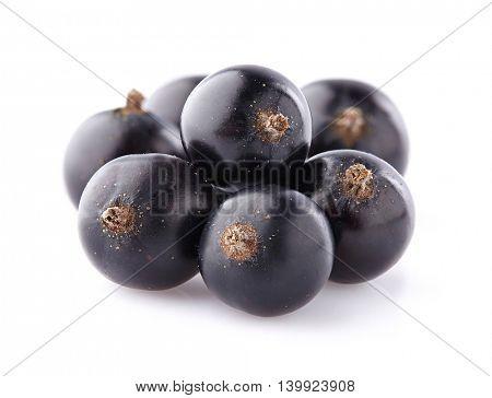 Blackcurrant in closeup