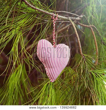 Handmade heart hanging on tree. Valentine's day background