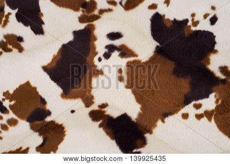 Cow skin texture background.Cow skin texture background.