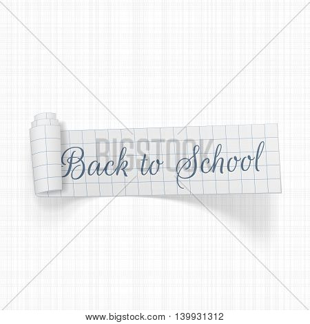 Back to School scroll paper Ribbon. Vector Illustration.