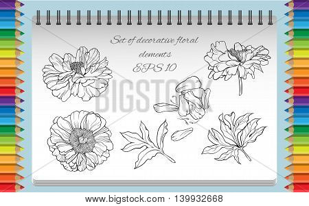 Set of isolated flowers and leaves. Coloring page.
