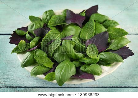 Basil and mint herbs on wooden table