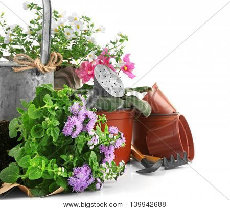 Gardening tools and flowers on white background