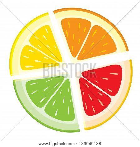 Vector set of citrus fruit slices - lemon, orange, lime, grapefruit on white background. Colorful segments.