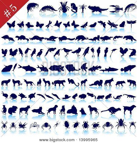 Conjunto de diferentes animales, aves, insectos y peces siluetas de vector