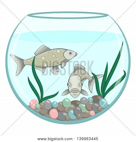Two green fishes in the round aquarium. Full face and side view of marine animal. Cartoon stile
