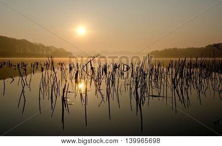 Beautiful sunrise over Hald lake, Viborg, Denmark