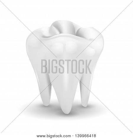 Tooth isolated on a white background . vector illustration .