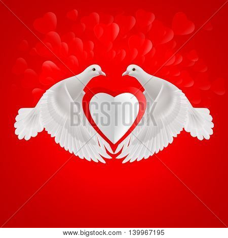Two white doves holds white heart in wings