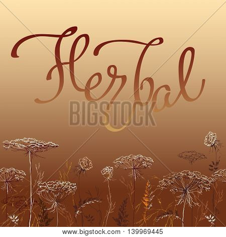 Calligraphy sign herbal on red background with decorative hand drawn border frame with herbs and grass. Herbal lettering for badges banners labels bio products package and eco designs vector.
