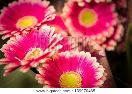 Close-up of bouquet of flowers at a flower shop