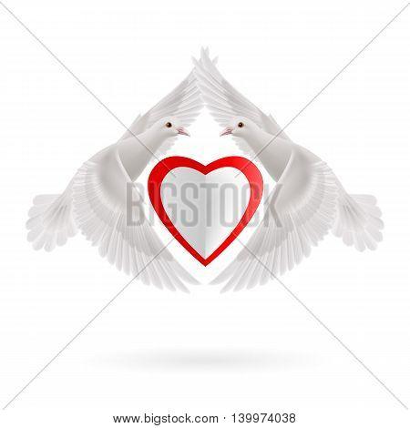 White heart between two white flying doves