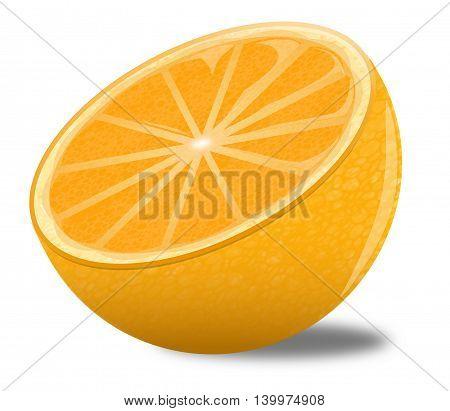 Illustration of a half of orange sitting on a white background