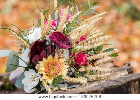 Beautiful wedding bouquet on the stump with fall foliage