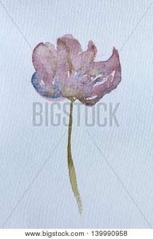 Dusty Pink Watercolour Flower