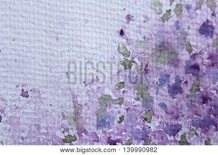 Purple Floral Watercolour Border