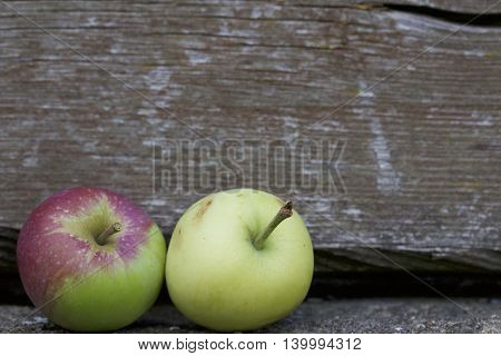 Two ripe apples lying side by side on the background of the old wooden logs. Fruits are red and green and yellow.