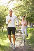 picture of portrait middle-aged man  - Middle Aged Couple Jogging In Park - JPG
