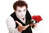 stock photo of clown rose  - mime holding a rose  - JPG