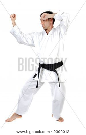 Martial Arts Stance