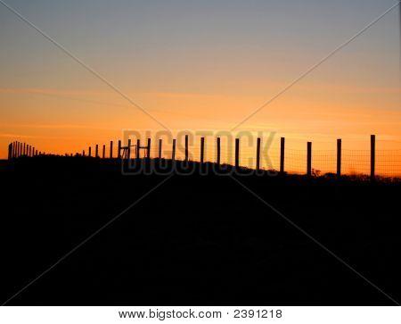 Dusk Fence