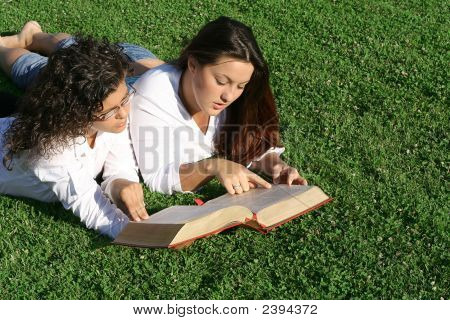 Youth Reading Bible Or Book