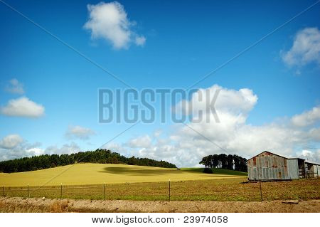 Local Country Landscape