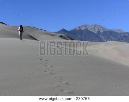 Sand Dune Hike
