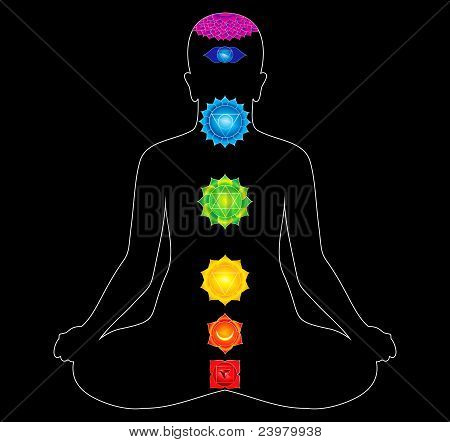 Colorful All Chakras Of Body